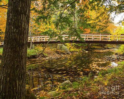Photograph - Bridge  by Alana Ranney