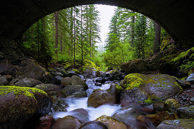 Mount Rushmore Wall Art - Photograph - Bridge Below Rainier by Chad Dutson