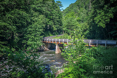 Photograph - Bridge On Wayah Road by Tom Claud