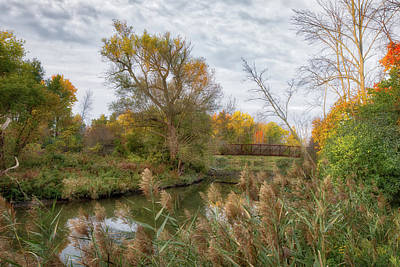 Photograph - Bridge Over Ellicott Creek by Guy Whiteley