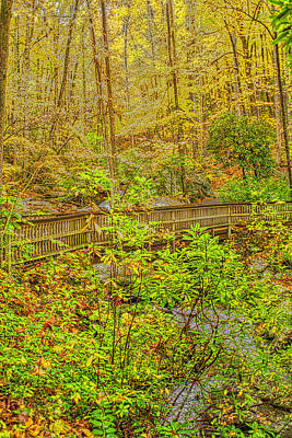 Photograph - Bridge Over Stream by Meta Gatschenberger