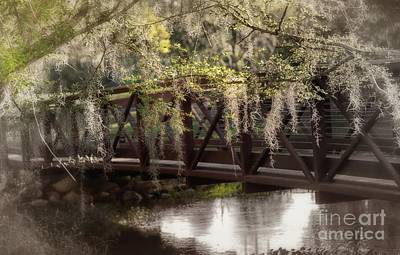 Photograph - Bridge Over Troubled Waters by Mary Lou Chmura