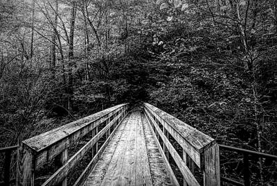 Going Green - Bridge To Moore Cove Falls Black and White by Judy Vincent