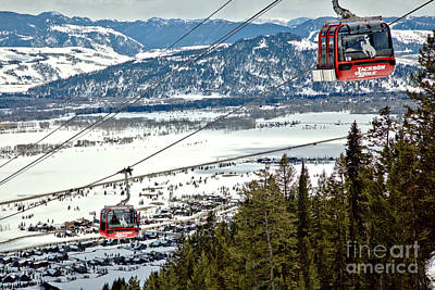 Photograph - Bridger Gondola Cable Cars by Adam Jewell