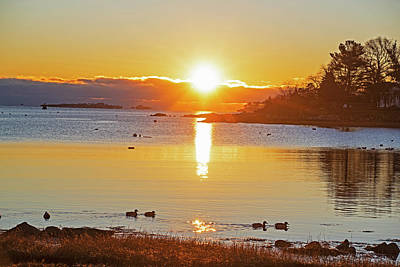 Photograph - Bright Juniper Cove Sunrise Salem Ma Ducks by Toby McGuire