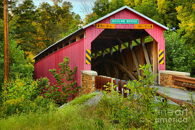 Photograph - Bright Red Flickinger's Covered Bridge by Adam Jewell