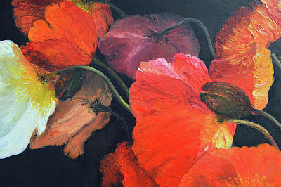 Painting - Brilliant Poppies On A Black Background by Jan Matson
