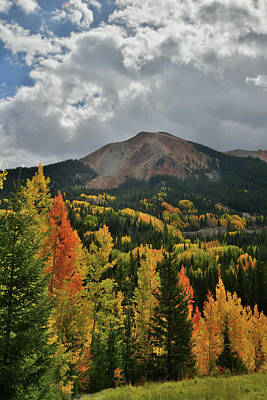 Photograph - Brilliantly Colored Aspens And Red Mountain In Colorado by Ray Mathis