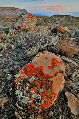 Photograph - Brilliantly Colored Lichen Covered Boulders At Sunset by Ray Mathis