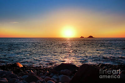 Photograph - Brison's Sunset by Terri Waters