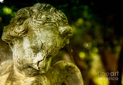 Photograph - Broken Angel by Debra Fedchin