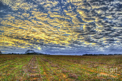 Photograph - Broken Clouds And Chopped Cotton Georgia Agriculture Farming Art by Reid Callaway