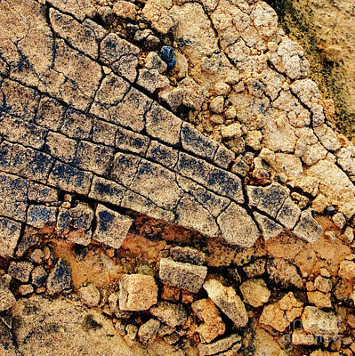 Photograph - Broken Sandstone II - Organic Patterns And Textures by Charmian Vistaunet