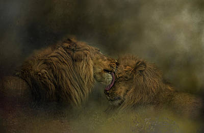 Photograph - Brotherly Love by Kelley Parker