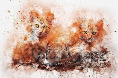 Brothers Cat Art Print