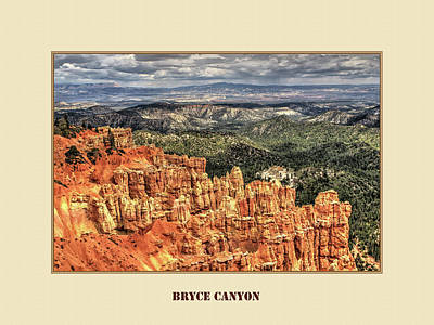 Animal Watercolors Juan Bosco - Bruce Canyon by Tom Prendergast