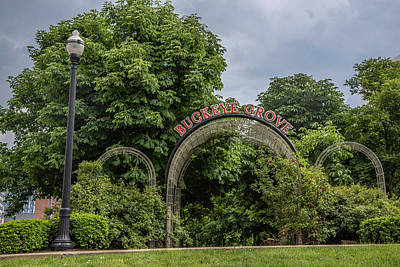 Photograph - Buckeye Grove The Ohio State University by John McGraw