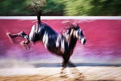 Photograph - Bucking Horse Abstract by Stuart Litoff