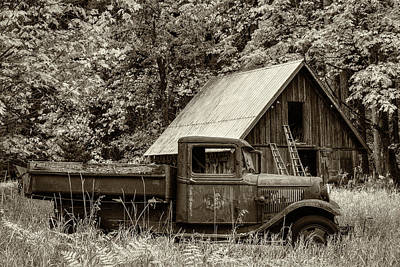 Photograph - Buckner Orchard In Sepia by Mark Kiver