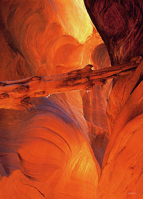 Buckskin Gulch Art Print by Leland D Howard