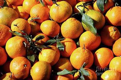 Photograph - Bunch Of Oranges by George Atsametakis