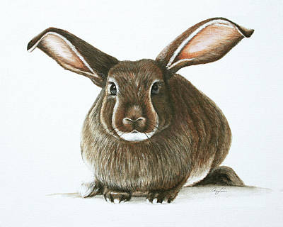 Painting - Bunny 4 by Ann Lauwers