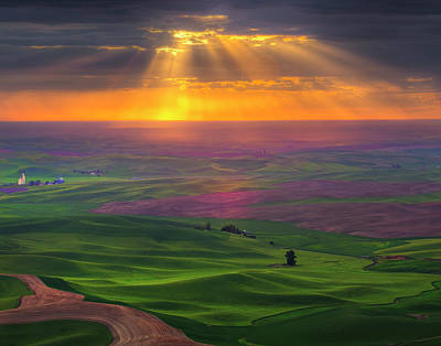 Photograph - Burst Of Light In The Palouse by Kevin Mcneal
