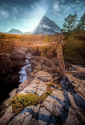 Photograph - Burst Of Light / Swiftcurrent Falls, Glacier National Park  by Nicholas Parker