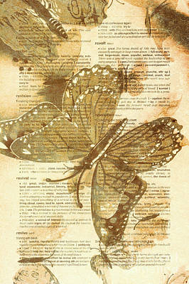 Photograph - Butterfly Antiquities by Jorgo Photography - Wall Art Gallery