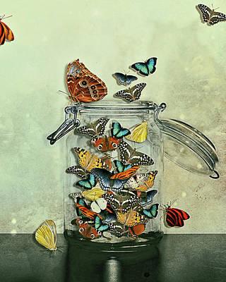 Jar Photograph - Butterfly Jar by Heather Landis