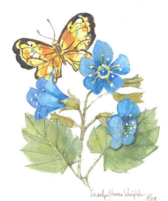 Wall Art - Painting - Butterfly With California Bluebells by Carolyn Shores Wright