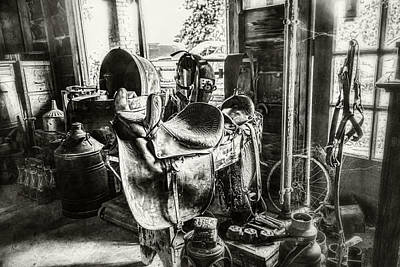 Photograph - Buy A Saddle by Sharon Popek