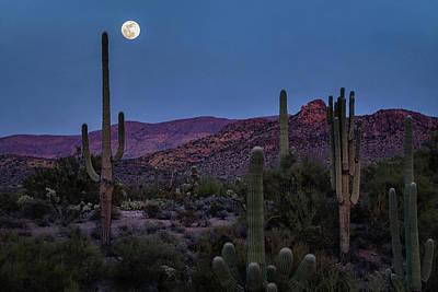 Photograph - By The Light Of The Snow Moon by Saija Lehtonen