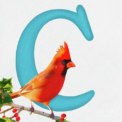 Painting - C Is For Cardinal by Tammy Lee Bradley