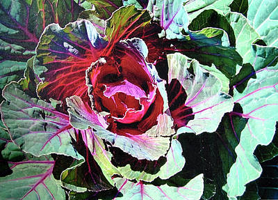 Painting - Cabbage by John Dyess