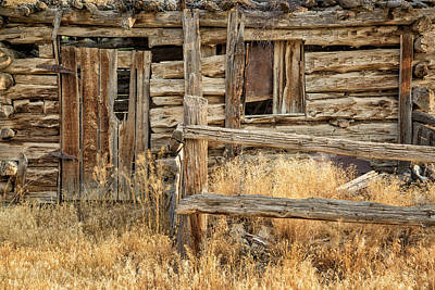 Photograph - Cabin Entry by Denise Bush