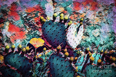 Photograph - Cacti On Drugs by Jon Burch Photography