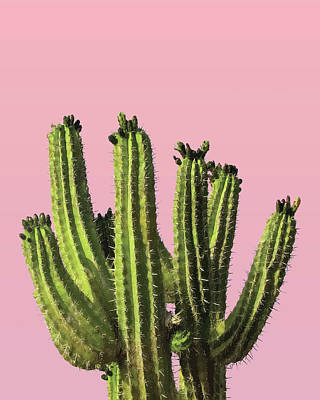 Royalty-Free and Rights-Managed Images - Cactus - Minimal Cactus Poster - Desert Wall Art - Tropical, Botanical - Pink, Green - Modern Prints by Studio Grafiikka