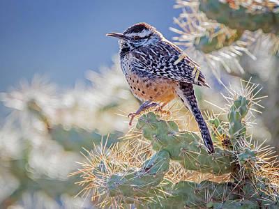 Photograph - Cactus Wren 4445-101718-1cr by Tam Ryan