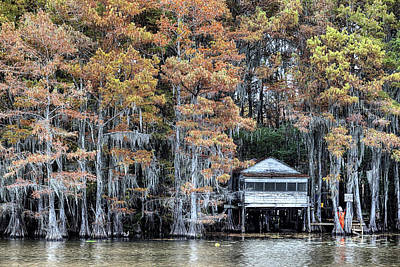 Photograph - Caddo Lake by JC Findley