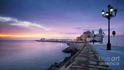 Photograph - Cadiz Skyline And Cathedral by Pablo Avanzini
