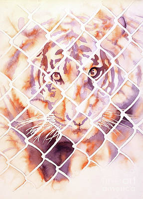 Painting - Caged Tiger II by Ryan Fox