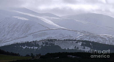 Photograph - Cairngorm Winter Magic by Phil Banks