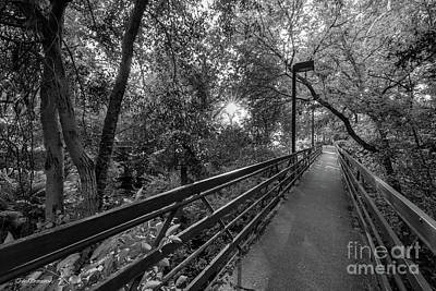 Photograph - Cal State University Chico Bridge by University Icons