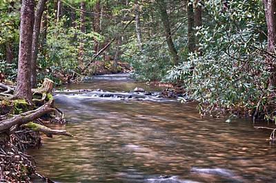 Photograph - Caledonia Stream by Dan Urban