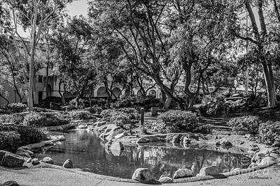 Photograph - California Institute Of Technology Throop Pond by University Icons