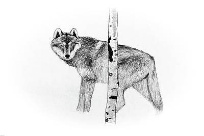 Yellowstone Drawing - Call Of The Wild by Aaron Geraud