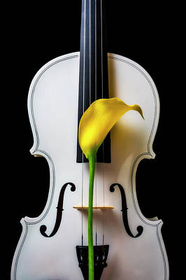 Photograph - Calla Lily And White Violin by Garry Gay