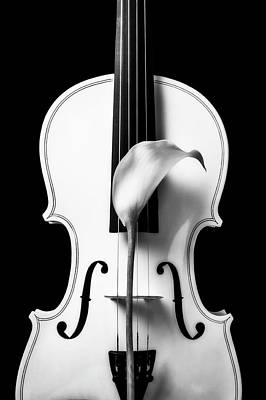 Photograph - Calla Lily And White Violin In Black And White by Garry Gay