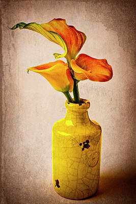 Photograph - Callies In Yellow Vase by Garry Gay